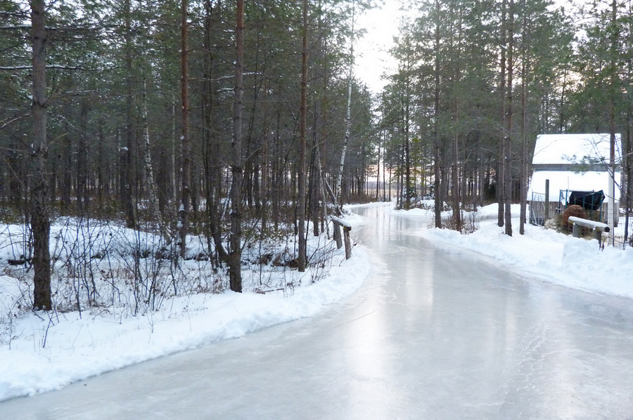 domaine-de-la-forêt-1.jpg