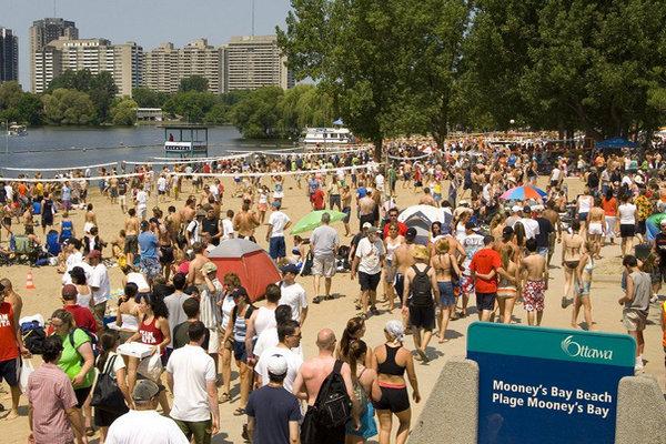 缩略图 | 北美最大户外沙滩排球赛在Mooney's Bay举办!还有众多娱乐活动等着你!