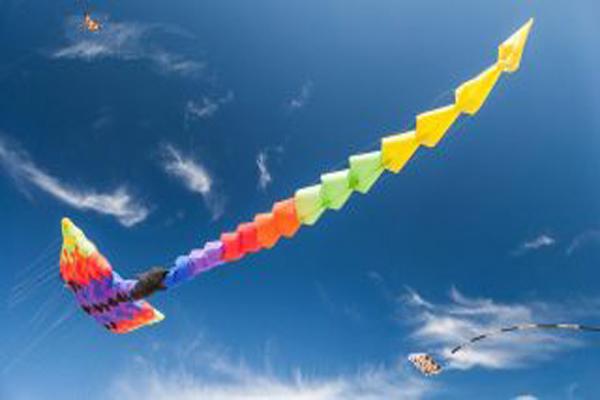 缩略图 | 渥太华风筝节,这个周末一起去放风筝吧,追忆童年,放飞心情!