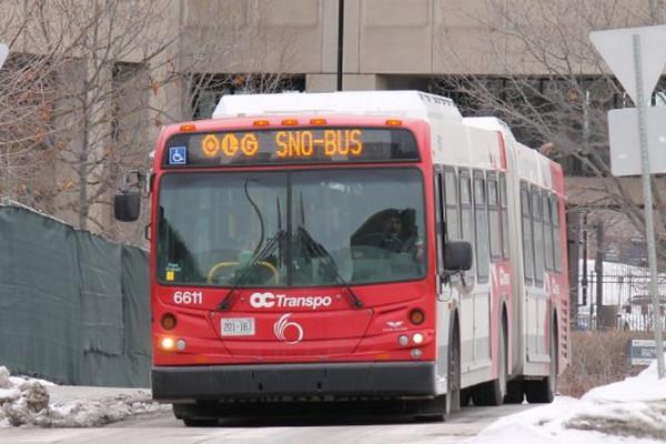 缩略图 | 2019年冰雪狂欢节渥太华 - 加蒂诺免费乘车大全