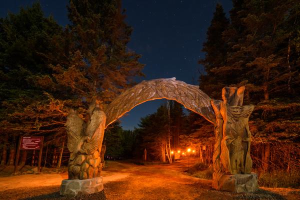 缩略图 | 超美妙超刺激!Omega野生动物园夜间之旅:在闪光的道路上寻找大自然的美丽和神奇!