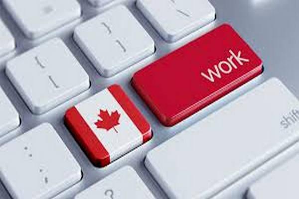缩略图 | 渥太华社区移民服务帮助国际留学生就业,仅限12名,快快报名吧!