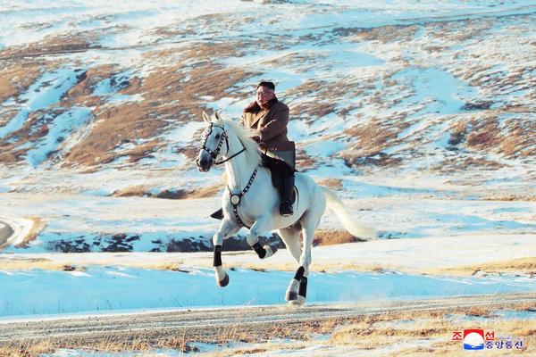 缩略图 | 真正的白马王子金正恩:白头山上骑白马!