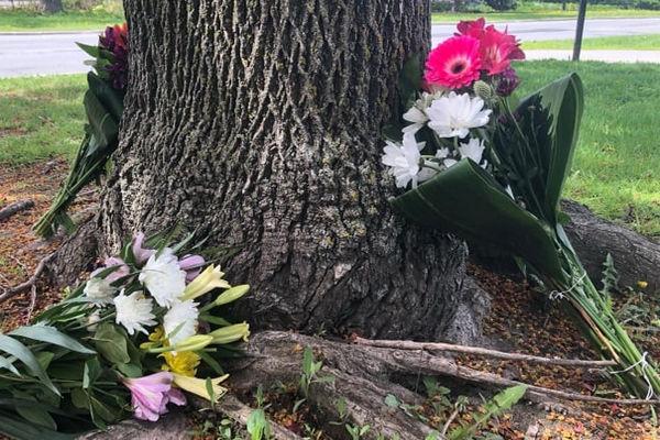 缩略图 | 渥太华马拉松比赛中一名中年男子去世,身份尚未确认!