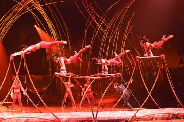 缩略图 | 加拿大国宝太阳马戏团裁员4679人,或申请破产!