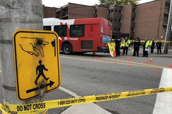 缩略图 | 渥太华OC Transpo又出事啦!公交撞死行人,部分道路已被封闭!