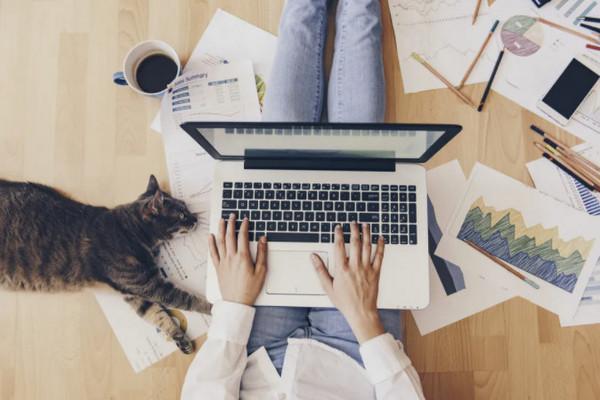 缩略图 | 加拿大税务局公布2020在家工作抵税细则:每人$500,办公家具都算