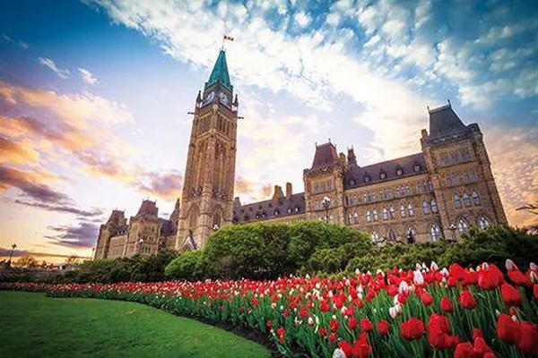 缩略图   加拿大三大党政纲:选谁才能让加拿大更美好?