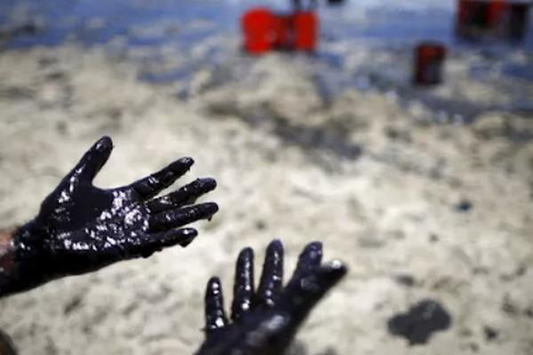 缩略图 | 特大灾难,57万升原油泄漏!加拿大教授警告近期不要吃海鲜!