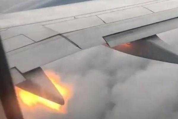 缩略图 | 恐怖!加拿大客机遭鸟击后引擎喷火,乘客吓坏留遗言!