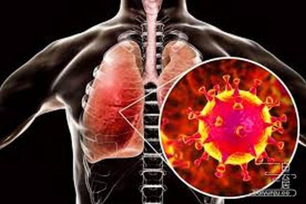 缩略图 | 【中英文对比】新型冠状病毒肺炎的症状及预防措施