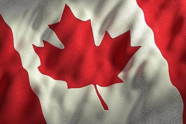 缩略图 | 调查:53%加拿大人正处于破产边缘,闲钱不足200加元