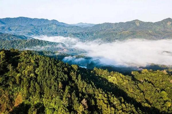 缩略图   美国黄石的13倍!中国首批国家公园正式官宣,惊艳世界的风景真的来了!